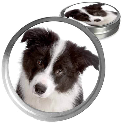 Border Collie Custom Combo