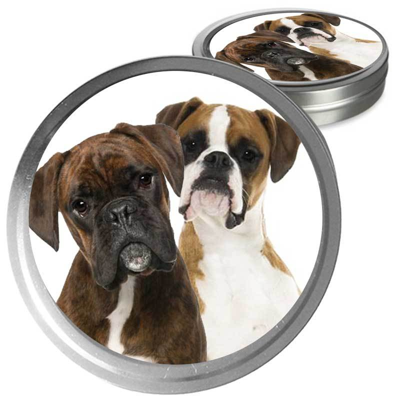 Boxer dog care