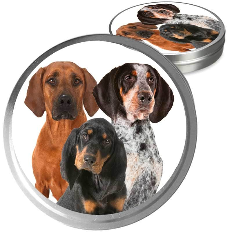 trio of coonhound dogs