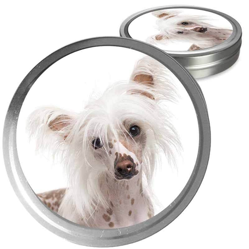 Chinese Crested care