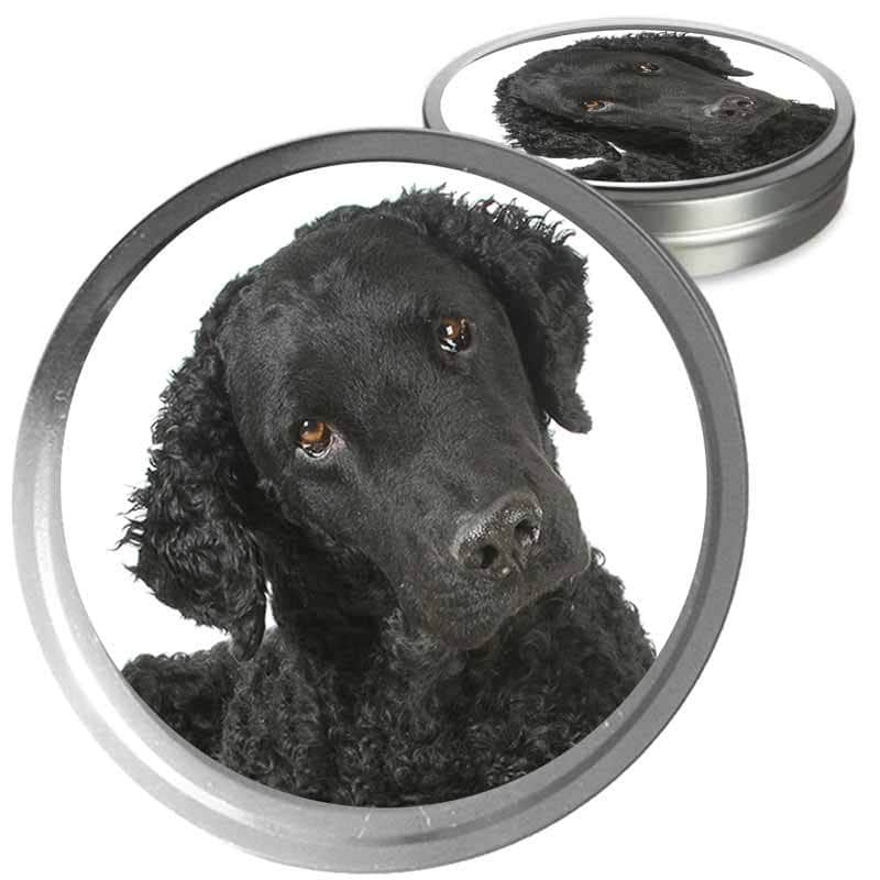 Curly Coated Retriever Custom Combo