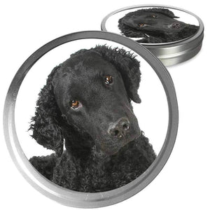 Curly Coated Retriever gift