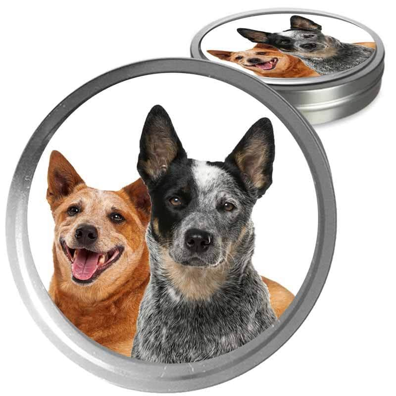 Australian Cattle Dog colors