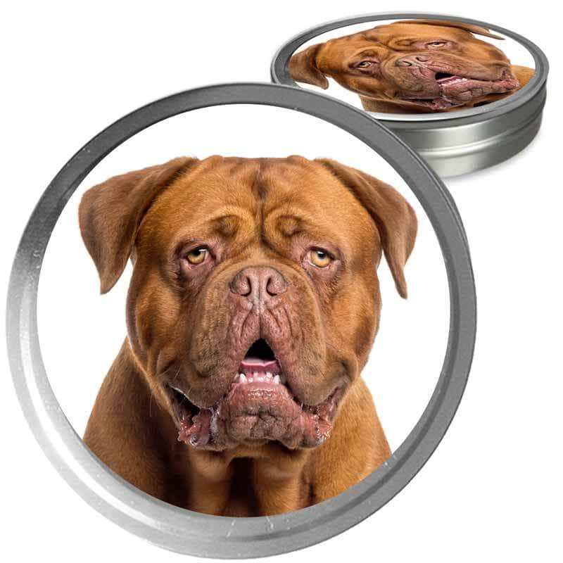 Dogue de Bordeaux Custom Combo