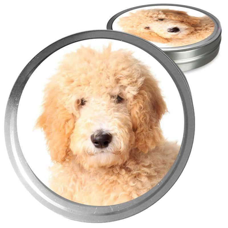 Goldendoodle gift