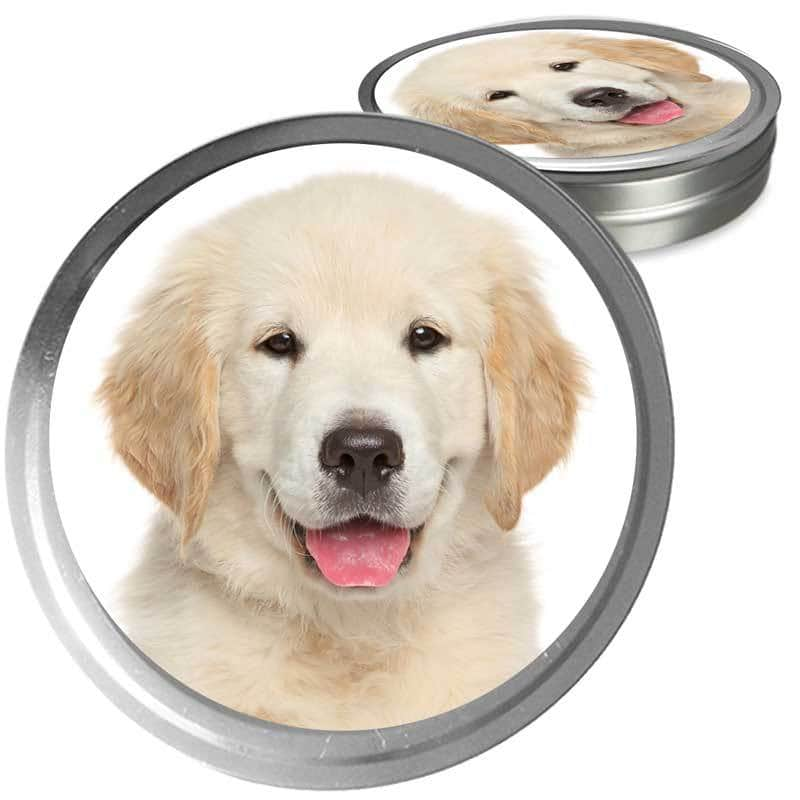 Golden Retriever Custom Combo