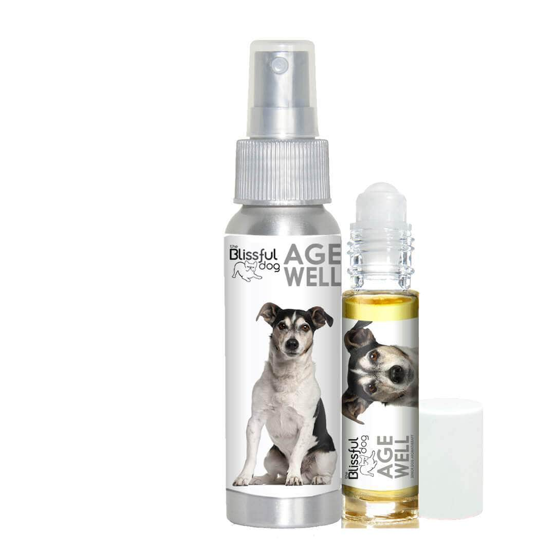 Parson Russell Terrier Age Well Dog Aromatherapy