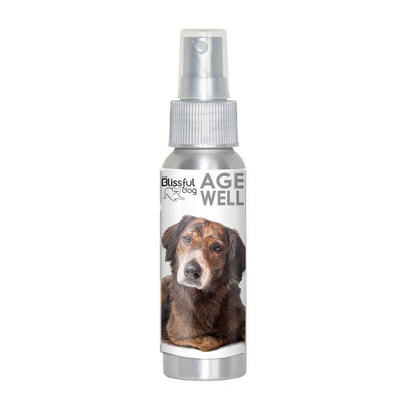 Mixed Breed Age Well Dog Aromatherapy