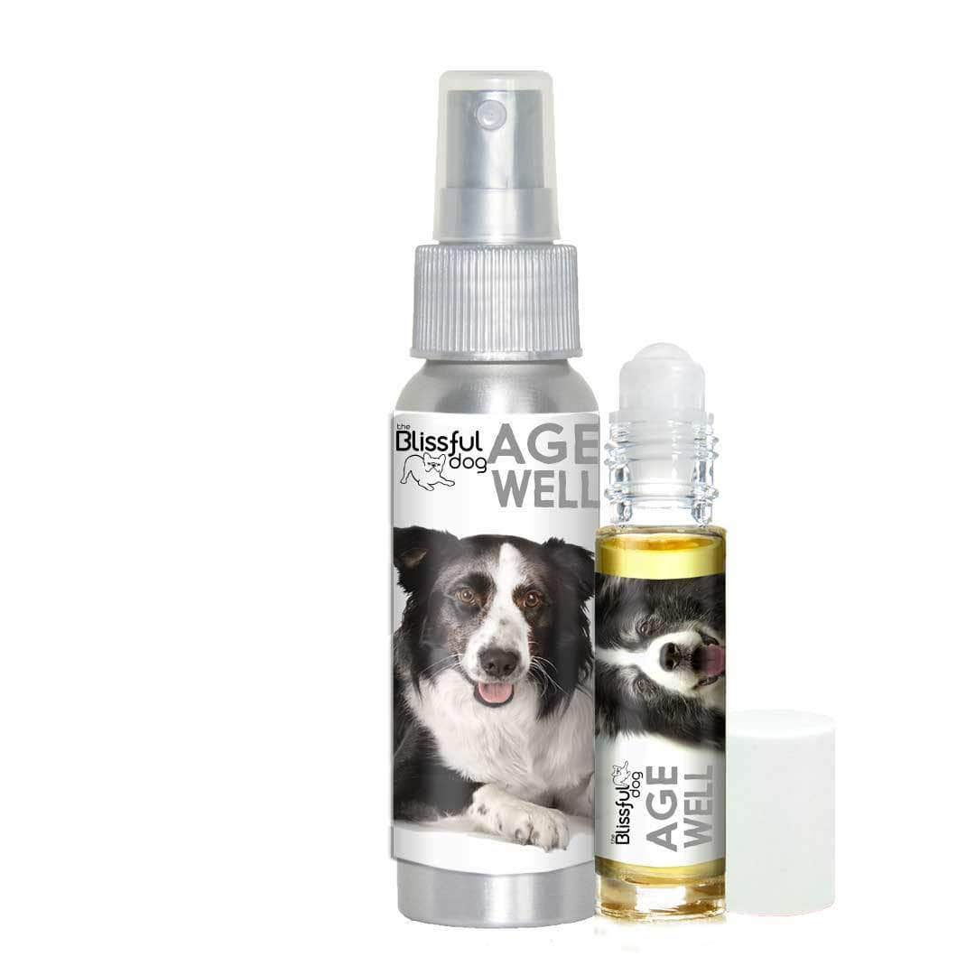 Border Collie Age Well Dog Aromatherapy