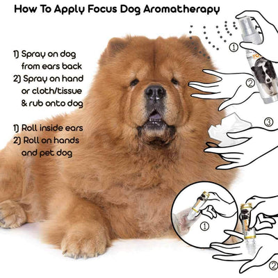 using aromatherapy for chow