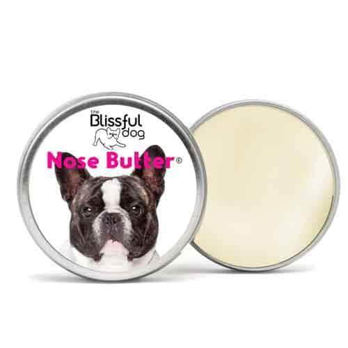French Bulldog Nose Butter | Pied