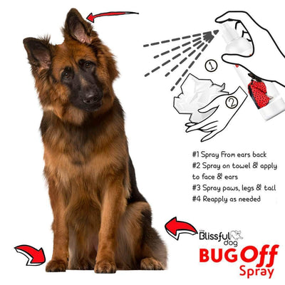 using bug spray on dog