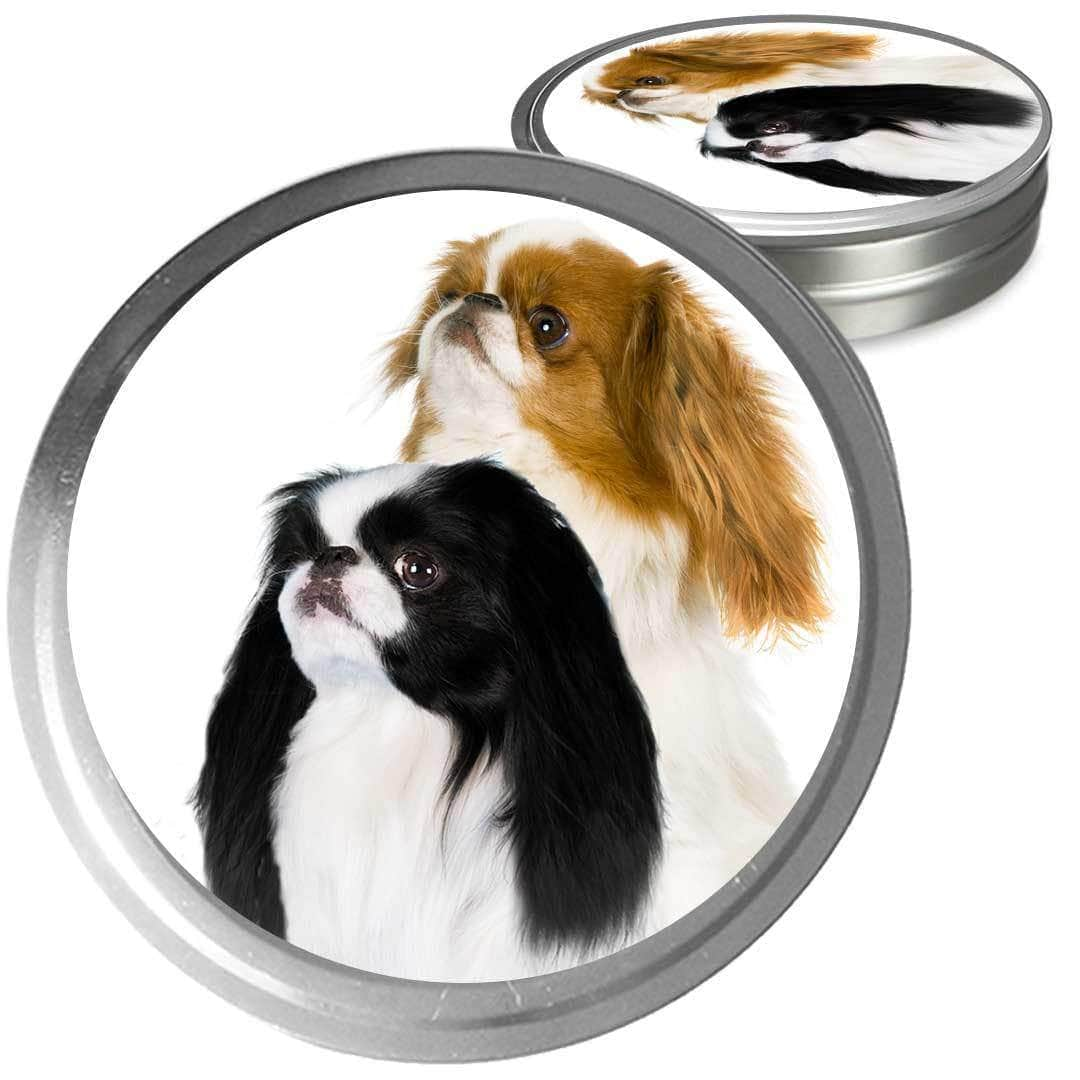 Japanese chin duo