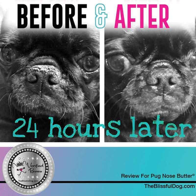 pug nose butter review