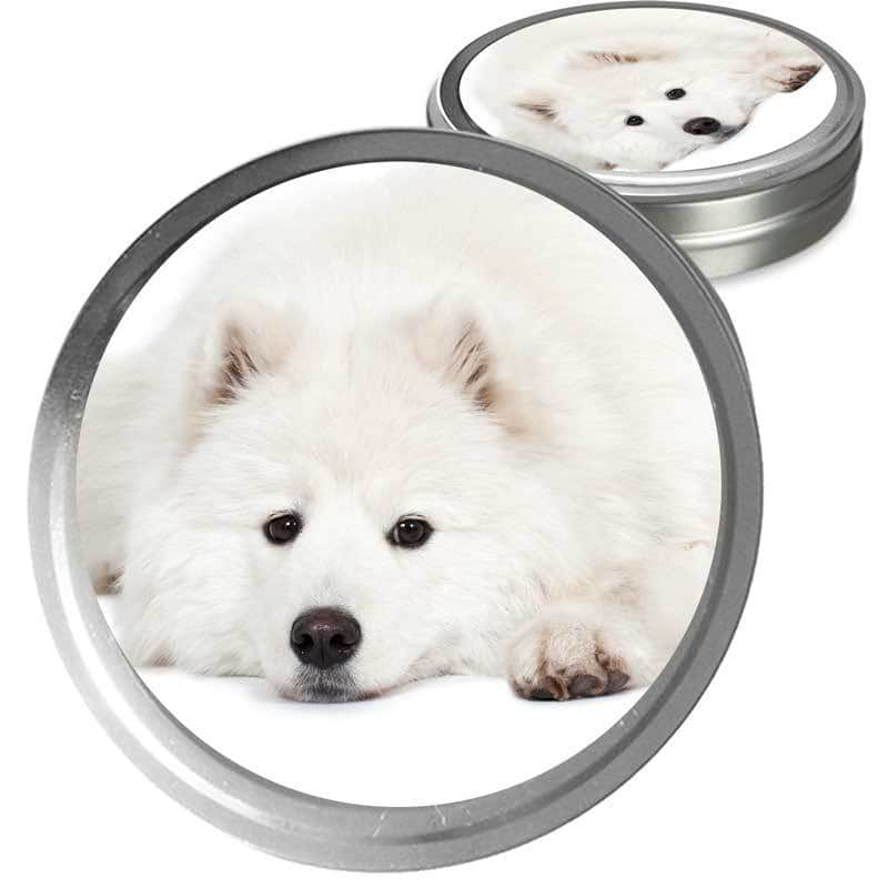 Samoyed Custom Combo