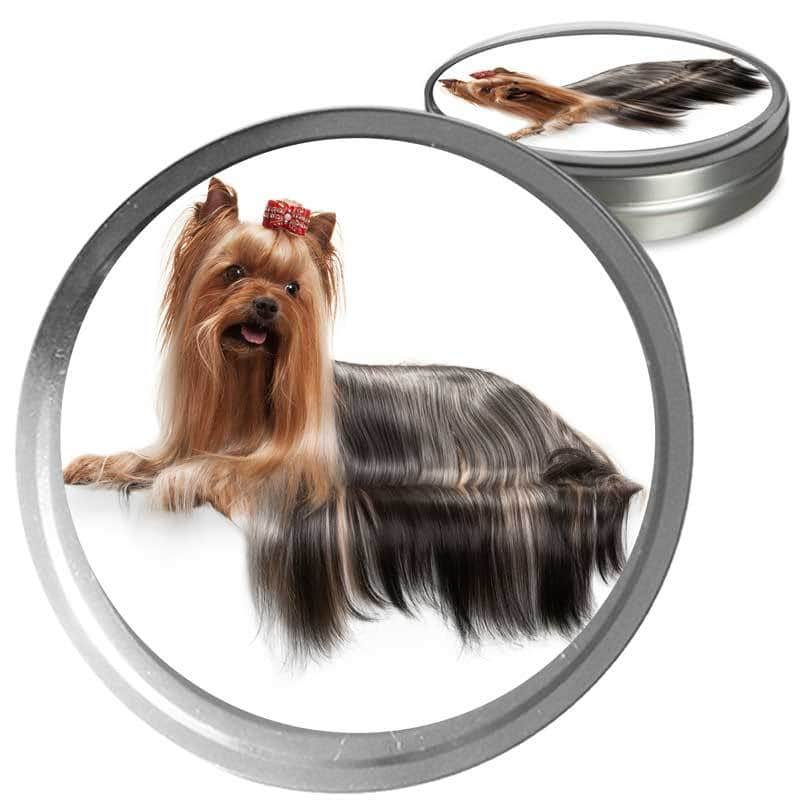 Yorkshire Terrier Custom Combo