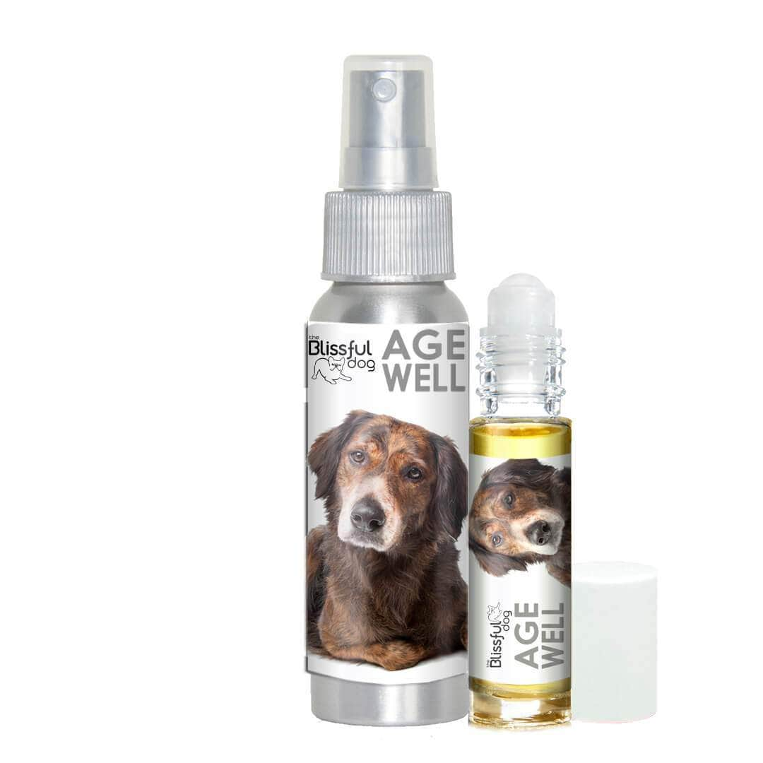 senior dog aromatherapy