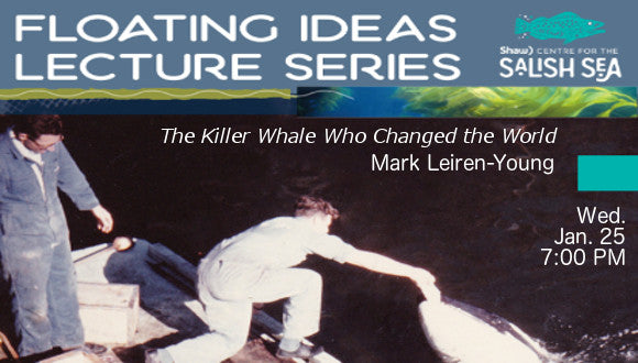 Killer Whale at Floating Ideas Series