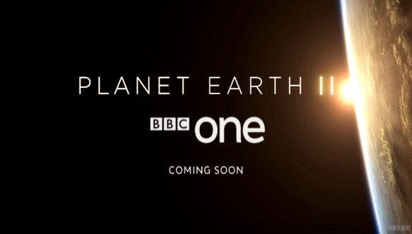 John Aitchison & the Filming of Planet Earth 2