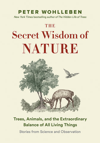 The Secret Wisdom of Nature