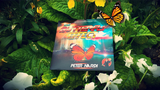 AJ Magic DVD Butterfly Effect By Peter Nardi