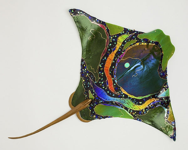 Green Eagle Ray - Eclipse Gallery