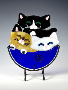 Kitten Cup Trio - Eclipse Gallery