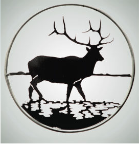 Elk in Water- round