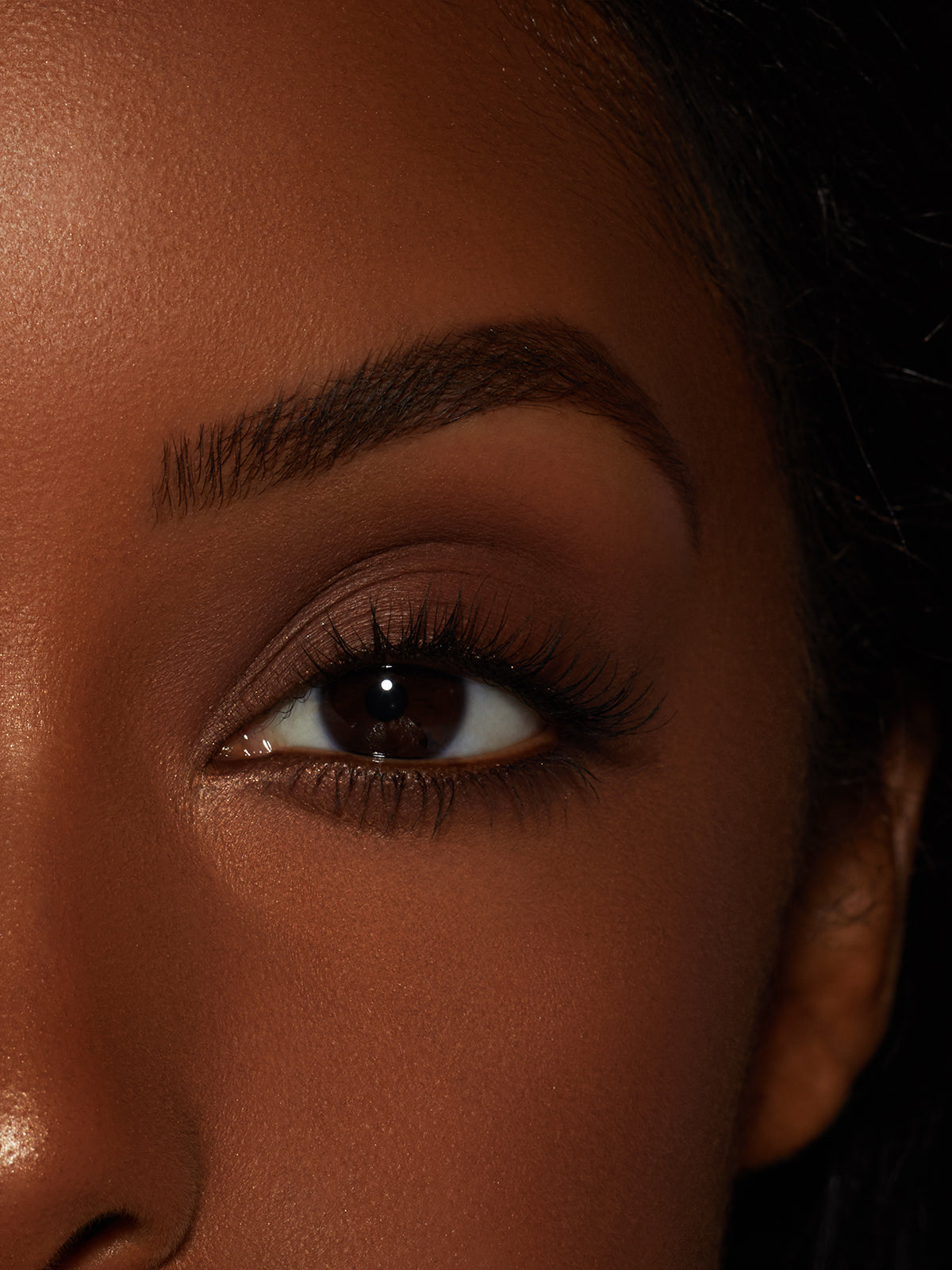 Ebony | Brow Powder