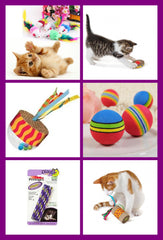 Cat & Kitten Toys & Greeting Cards