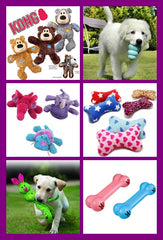 Puppy & Small Dog Toys, Collars & More