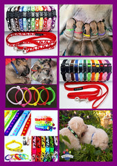 Puppy Identification Collars & Puppy Pack Collar/Lead Sets