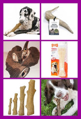 HEAVY CHEWER? Nylabone, Dogwood Sticks, Deer Antlers & Goats Horns