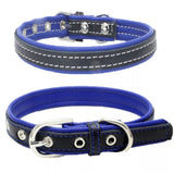 High Quality Padded Collars for Medium/Large Puppies and Small/Medium Dogs