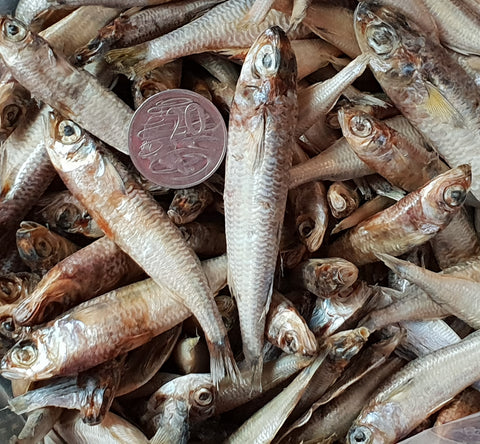 Dried Little Fish 100gm
