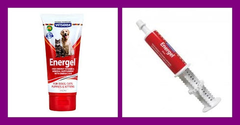 Energel 60ml Syringe or 200gm Tube from