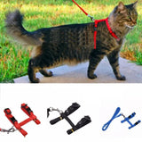 Cat Harness - Red, Pink, Purple, Blue, Green & Black.