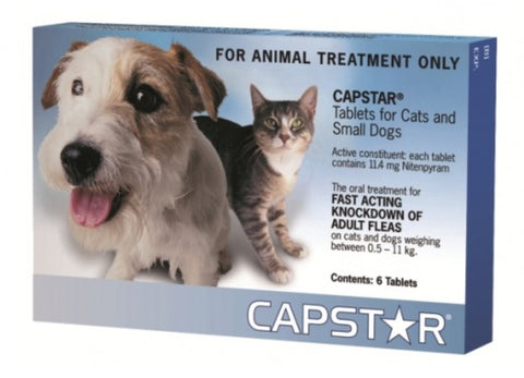 Capstar Small Dog & Cat Flea Treatment 6 Pack