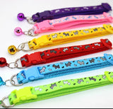 "Cat or Puppy ID Collars ""Dogs"" Set of 6 or Single Collars"