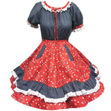 Country Square Dance Outfit