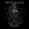 Meshuggah - The Violent Sleep of Reason (Vinyl 2LP Record)