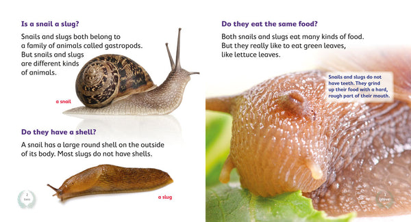 Is a Snail a Slug? (Level 12)
