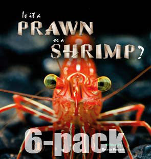 Is it a Prawn or a Shrimp? 6-pack (Level 15)