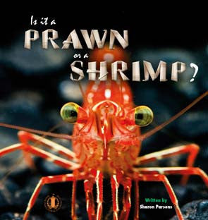 Is it a Prawn or a Shrimp? (Level 15)