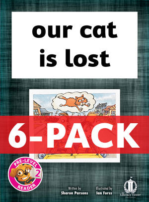 our cat is lost 6-pack (Pre-level 2)