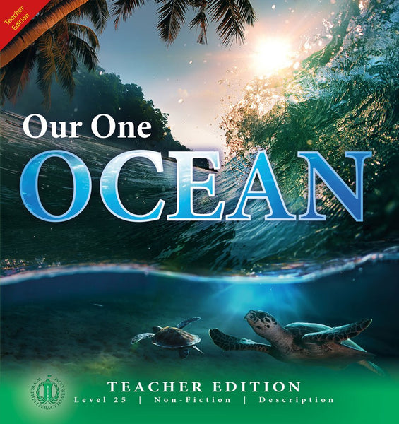 Our One Ocean 6-pack