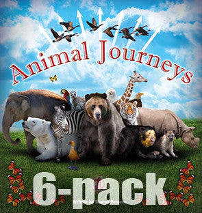 Animal Journeys 6-pack (Level 28)