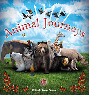 Animal Journeys (Level 28)