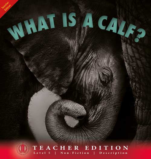 What is a Calf? (Teacher Edition - Level 5)