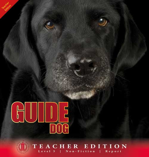 Guide Dog (Teacher Edition - Level 5)